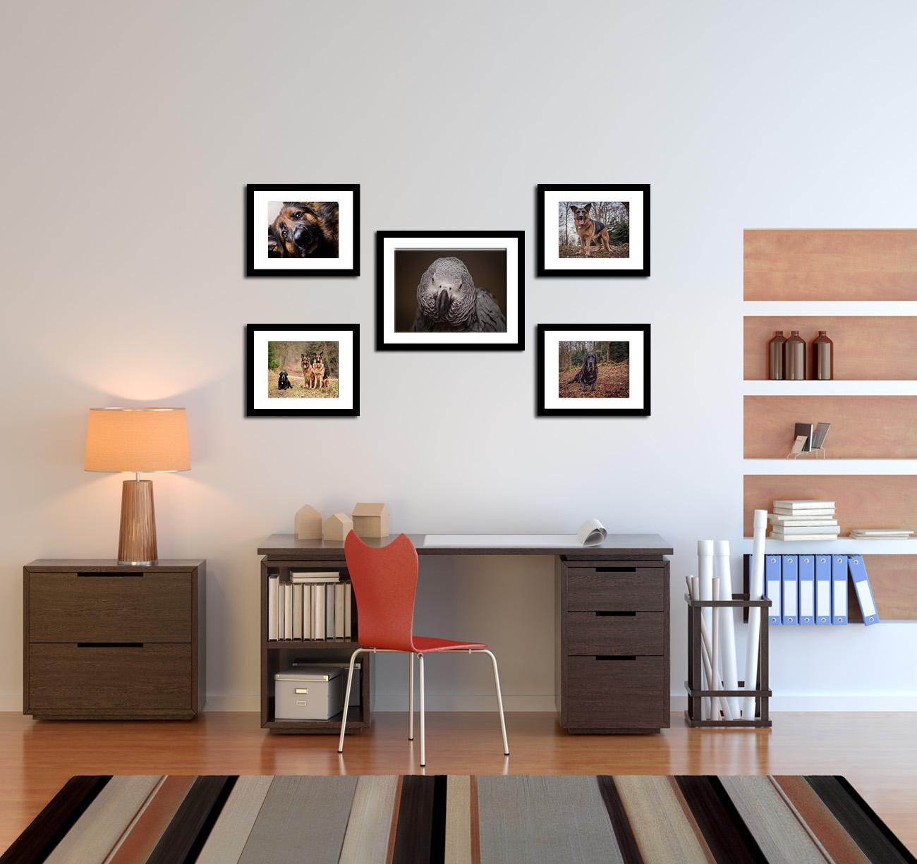 Quintan Office copy